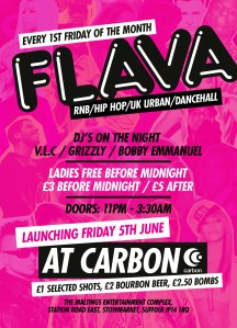 flava_launch_a6_back